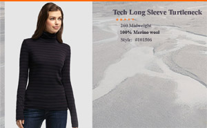 Icebreaker Tech Long Sleeve Turtleneck Stripe