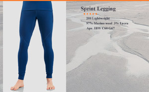 Iceвreaker Sprint Leggings | арт. 100 402