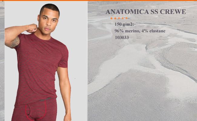 b8e3b3fc58564 Футболка Icebreaker Anatomica SS Crewe | 103 033 601 - мужское ...