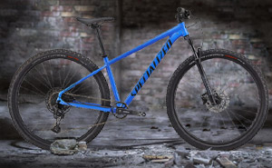 Specialized Rockhopper Expert 29 2021 | Blue